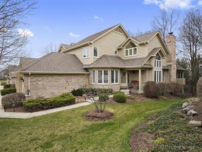5533 Durand Drive Downers Grove, IL MLS# 09174337