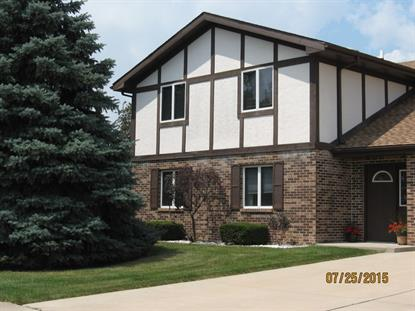 801 Meadow Ridge Lane New Lenox, IL MLS# 09180626