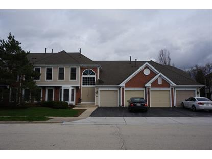 1810 Fox Run Drive Elk Grove Village, IL MLS# 09188640