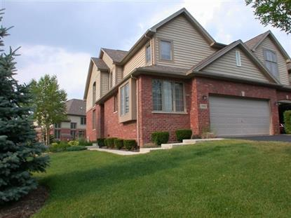 3242 Lightning Court New Lenox, IL MLS# 09194176