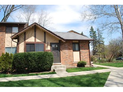 18W204 LATHROP Lane Villa Park, IL MLS# 09194403