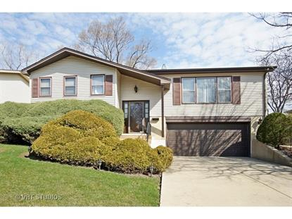 312 Cottonwood Court Schaumburg, IL MLS# 09196048