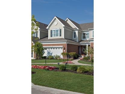 1264 Falcon Ridge Drive Elgin, IL MLS# 09196961