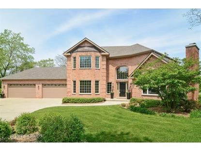 407 Hypoint Drive Deer Park, IL MLS# 09206359