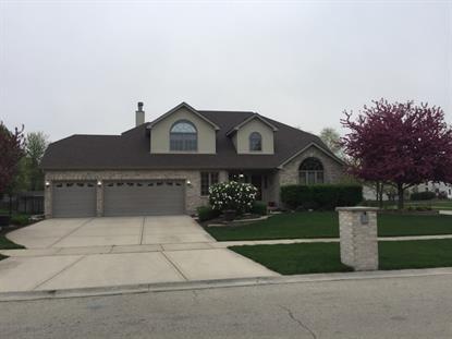 13413 BLACKSTONE Lane Plainfield, IL 60585 MLS# 09208360