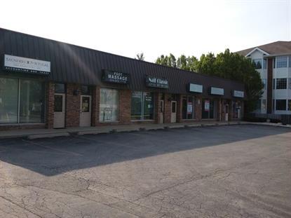 557 N HOUGH Street Barrington, IL 60010 MLS# 09281474