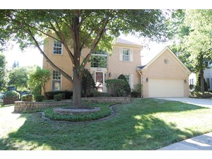 338 W Hampshire Drive Bloomingdale, IL MLS# 09307538