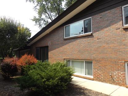 419 Lageschulte Street Barrington, IL 60010 MLS# 09316679
