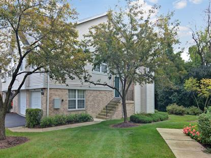 9347 Waterfall Glen Boulevard Darien, IL MLS# 09343489