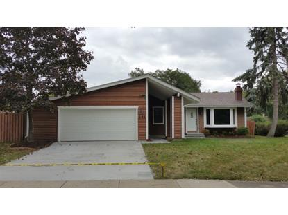 241 Sterling Court Bloomingdale, IL MLS# 09343850