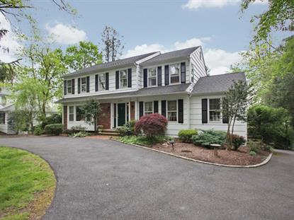 24 East Madison Ave Florham Park, NJ MLS# 028023541