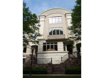 527 Waterview Place New Hope, PA MLS# 055052308