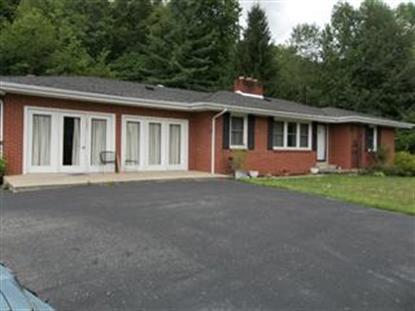 Real Estate for Sale, ListingId: 33063815, Brodhead,KY40409