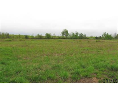 0 (43ac) ROUTE 30 Amsterdam, NY MLS# 201118775