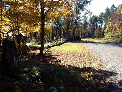 4 lots THALIA CT Greenfield, NY MLS# 201330594