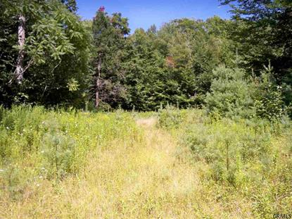 0 KING RD Greenfield, NY MLS# 201332968