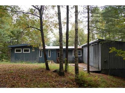 1187 WASHINGTON COUNTY ROUTE 47 Argyle, NY MLS# 201420454