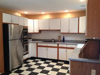 233 POINT OF WOODS DR Albany, NY MLS# 201421213