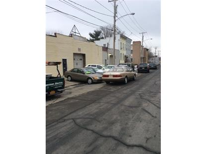 393 SHERIDAN AV Albany, NY MLS# 201425388