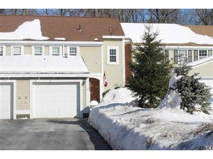 20 EAST HAYSTACK RD Clifton Park, NY MLS# 201503227