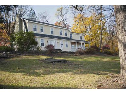 271 NEW SCOTLAND SOUTH RD Slingerlands, NY MLS# 201511150