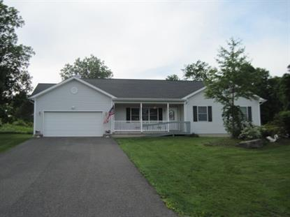 203 COUNTRY ESTATES RD Greenville, NY MLS# 201513176