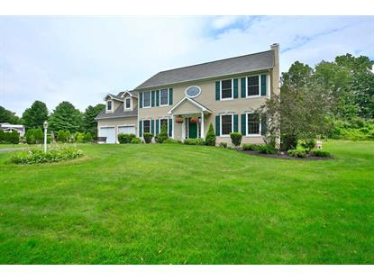 509 LOOKOUT CT Slingerlands, NY MLS# 201514995