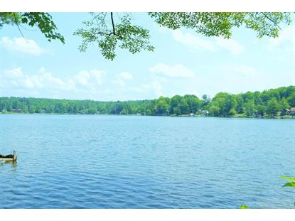 2360 DIAMOND POINT RD Galway, NY MLS# 201515292