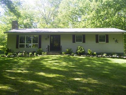1901 HERMANCE RD Galway, NY MLS# 201518787
