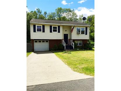 29 MOHICAN PL Albany, NY MLS# 201519158