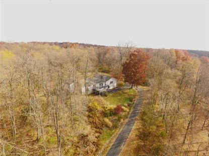 1590 STATE ROUTE 9J Stuyvesant, NY MLS# 201523564