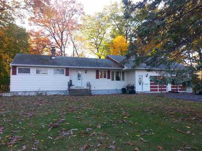 67 WOODLAWN DR Ravena, NY MLS# 201523644