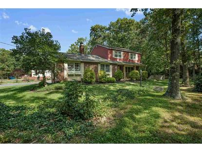 1965 Dutch Mill Road Franklinville, NJ MLS# 474502