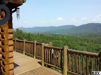 2464 BRIDLE RIDGE WAY  Lenoir, NC MLS# 9578518