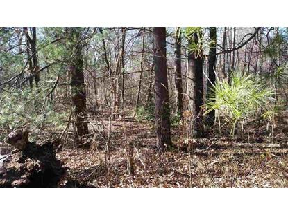 Lot 2 MT PLEASANT CHURCH RD  Hildebran, NC MLS# 9579315