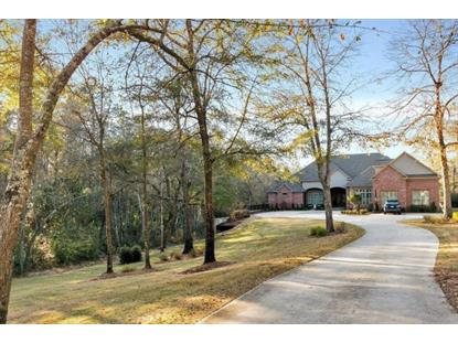 6094 Riverchase Drive  Mobile, AL MLS# 235398