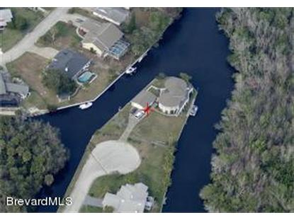1191 NE Sunswept Road Palm Bay, FL MLS# 691184