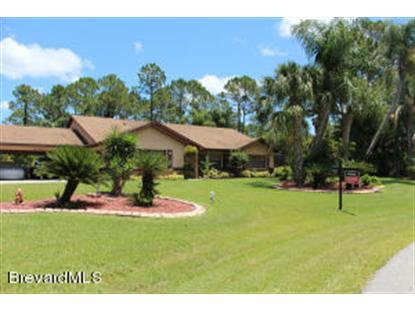 907 SW Hammacher Avenue Palm Bay, FL MLS# 697642