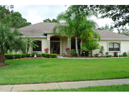 1836 SE Amberwood Drive Palm Bay, FL MLS# 697835