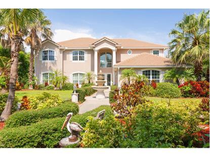 6965 S Tropical Merritt Island, FL MLS# 699494