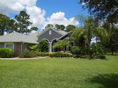 1821 SE Winding Ridge Circle Palm Bay, FL MLS# 701524