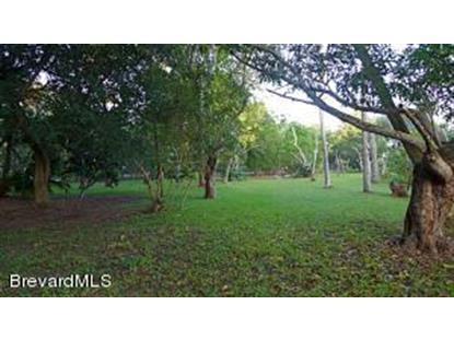 10200 S Tropical Trail Merritt Island, FL MLS# 703193
