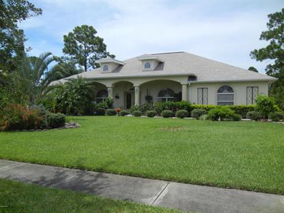 1811 Winding Ridge Circle Palm Bay, FL MLS# 703893
