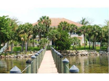 3255 Spartina Avenue Merritt Island, FL MLS# 705394