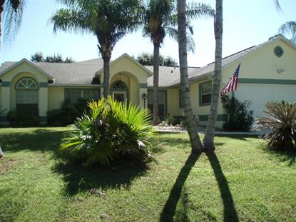 861 SW Santo Domingo Avenue Palm Bay, FL MLS# 706654
