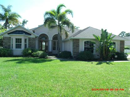 1701 SE Winding Ridge Circle Palm Bay, FL MLS# 706921