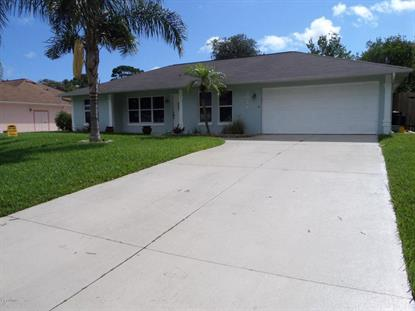 3029 Sabal Palm Drive Edgewater, FL 32141 MLS# 713421