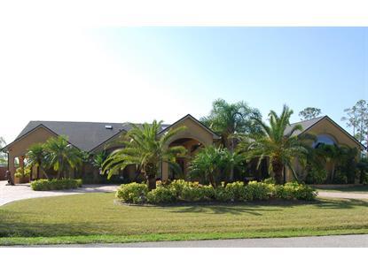1855 SE Plantation Circle Palm Bay, FL MLS# 717239