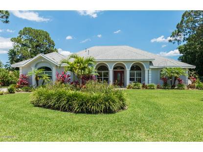 1731 SE Devonwood Court Palm Bay, FL MLS# 725203