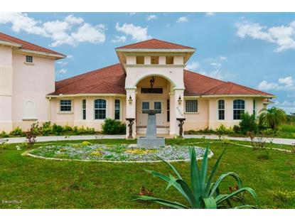 8504 Horseshoe Avenue Palm Bay, FL MLS# 730349